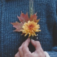 Fall Boutonniere For The Groom